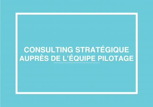 Consulting Stratégique Auprès De L'équipe Pilotage